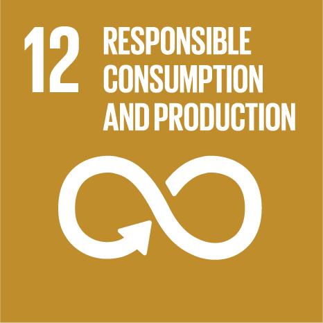 SDG Icon 12