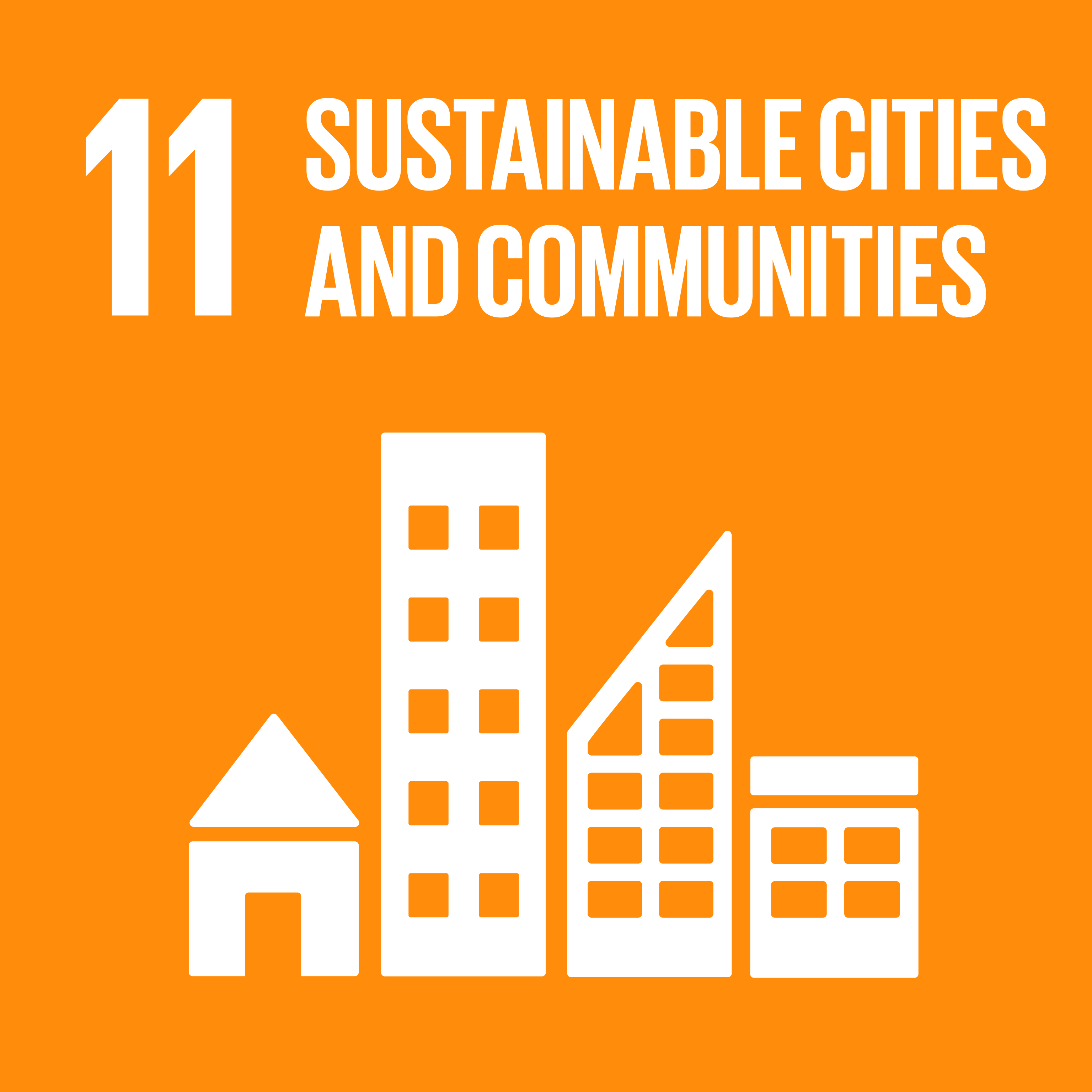 SDG icon 11