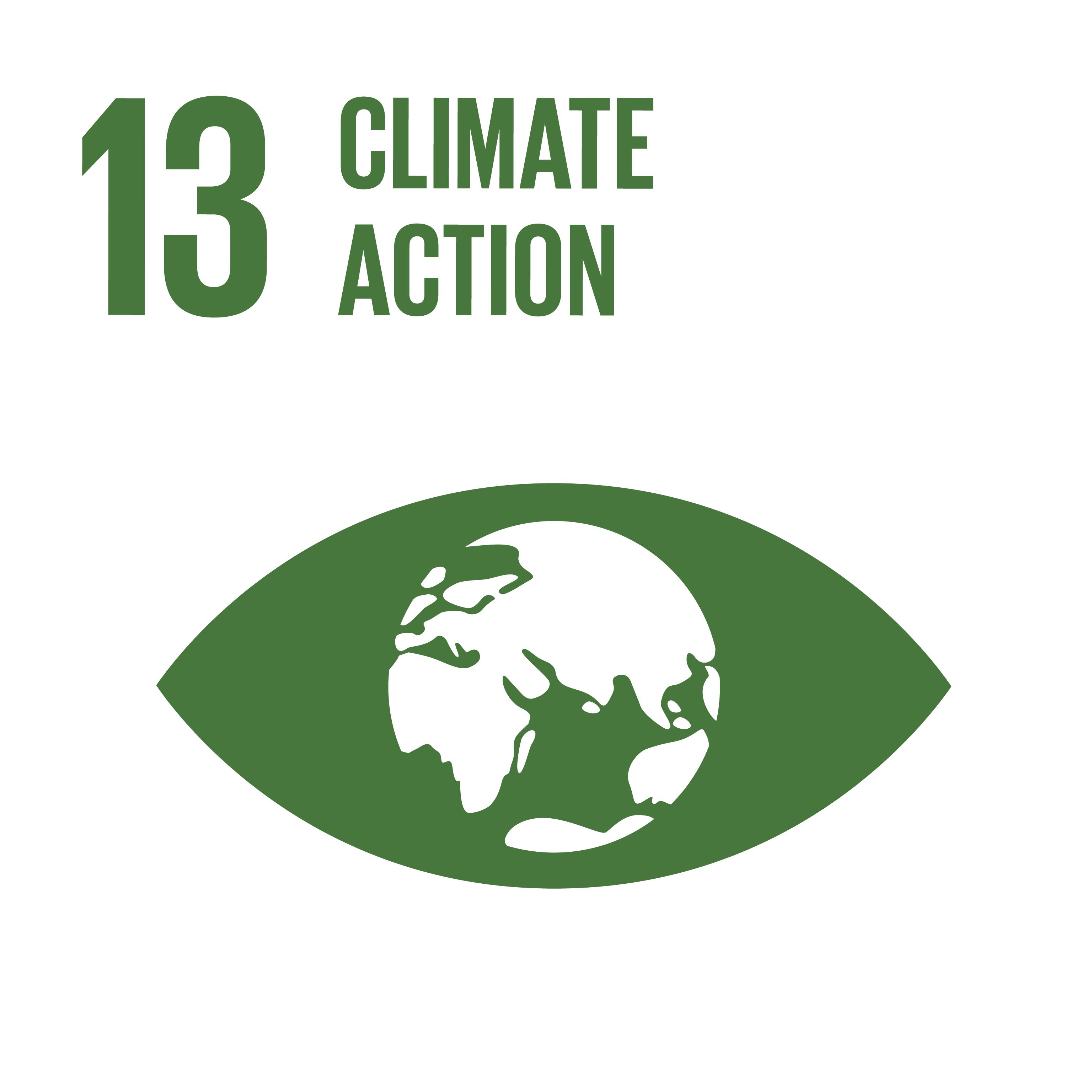 SDG icon 13