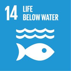 SDG icon 14