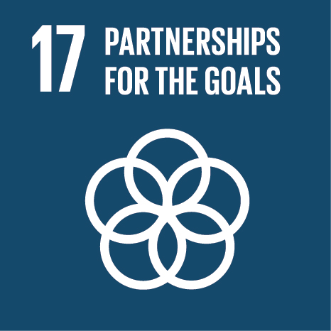 SDG icon 17