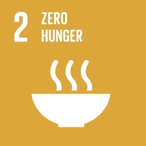 SDG icon 2