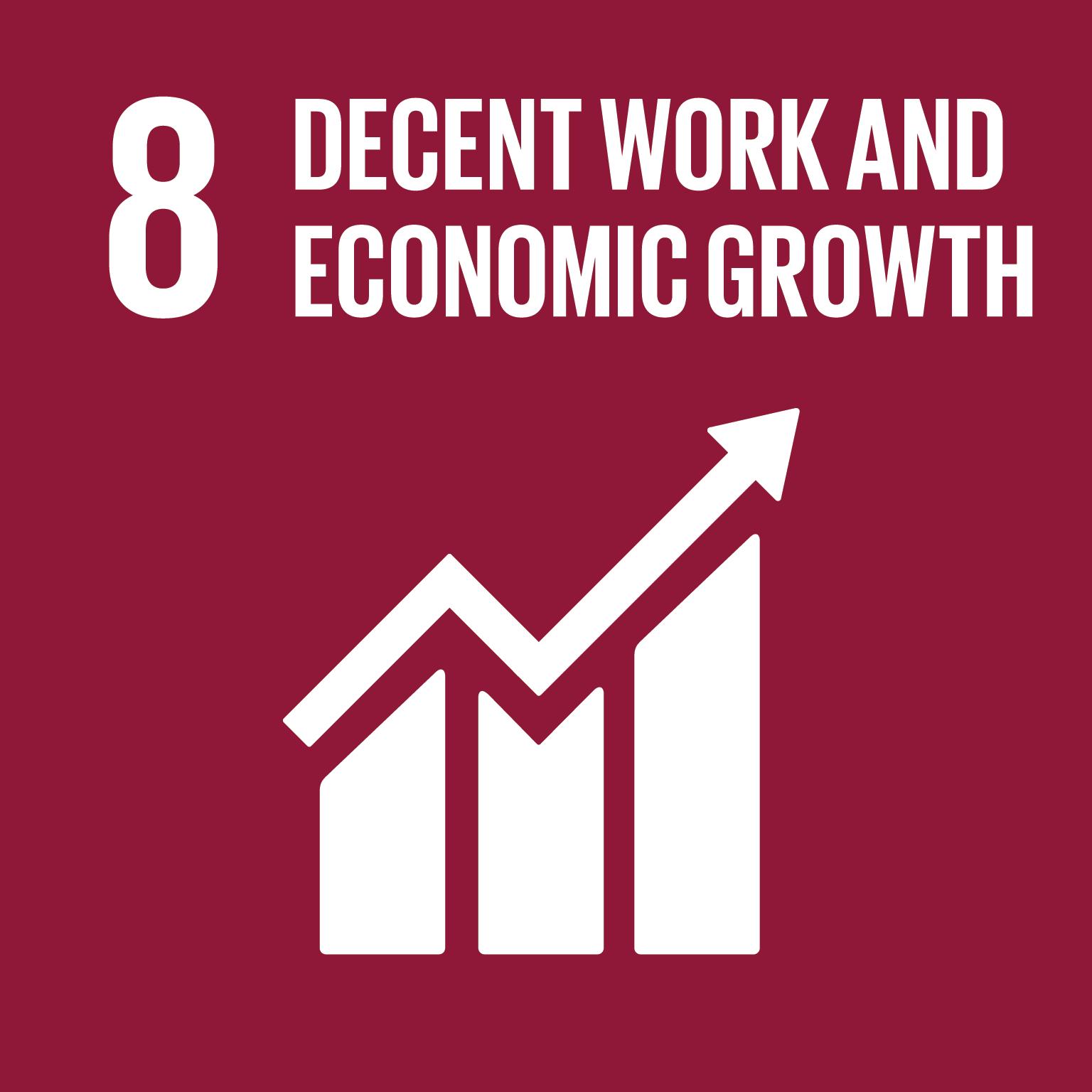 SDG icon 8